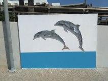 Dolphins -Δελφίνια